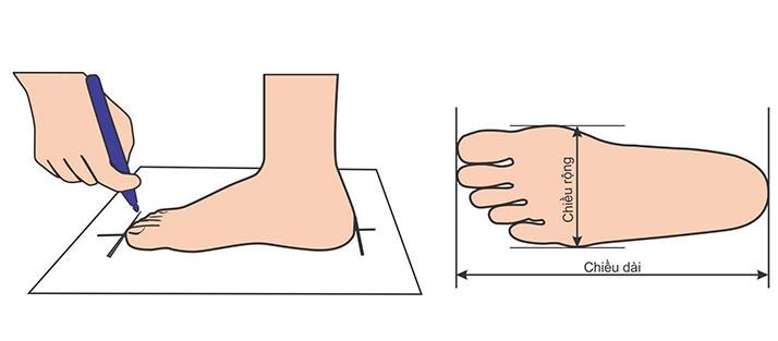 Cách đo kích thước bàn chân